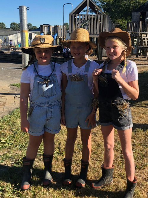 Gibson-Construction-NZ-sponsorship-Pokuru-School-Junior-famers-gallery-2